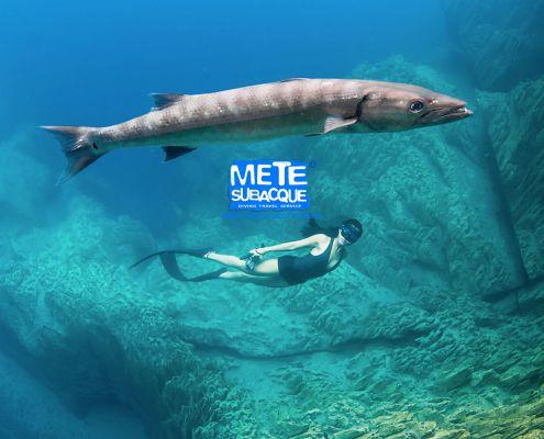 mete subacque