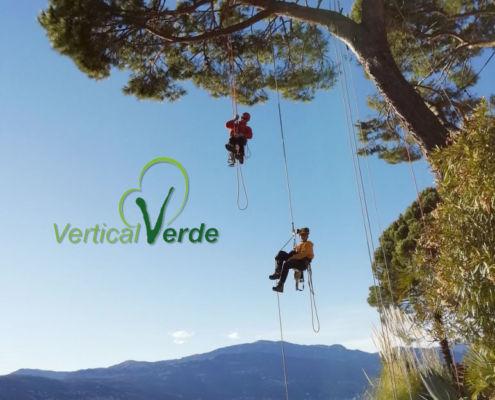 verticalverde