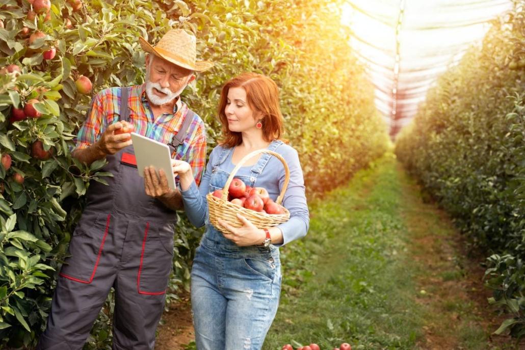 e-commerce aziende agricole